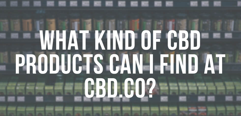 WHat kind of products can i find at CBD.co?