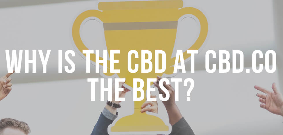 Why is CBD.co the best?